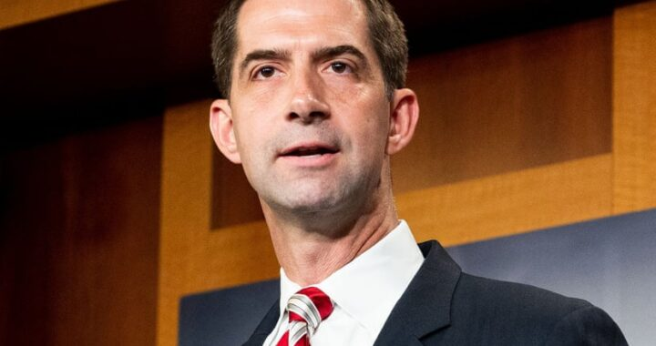 Cotton Letter to President Biden on Pandemic and Border