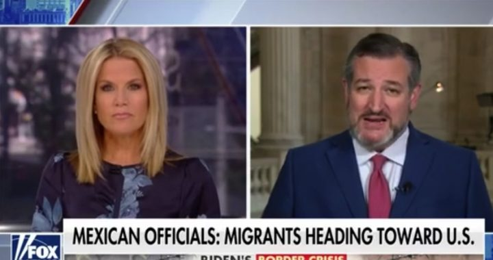 Ted Cruz blasts Biden for creating 'worst illegal immigration' at southern border in decades