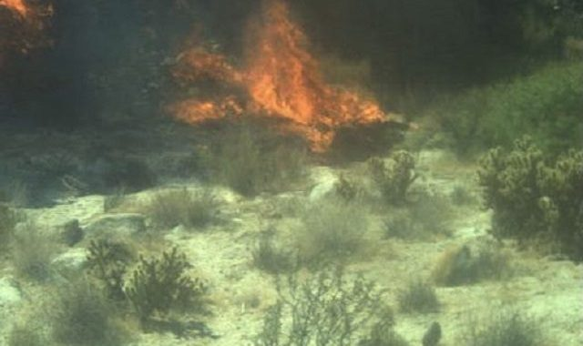 Migrant Intentionally Started California Wildfire near Border, Say Feds